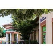 Levendula Gyógyszertár - PatikaNap Békésen