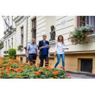 Virágos Magyarország - Zsűrizés
