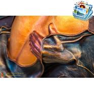 XXV. Csuta Nemzetközi MűvészTelep - Negyedik Nap